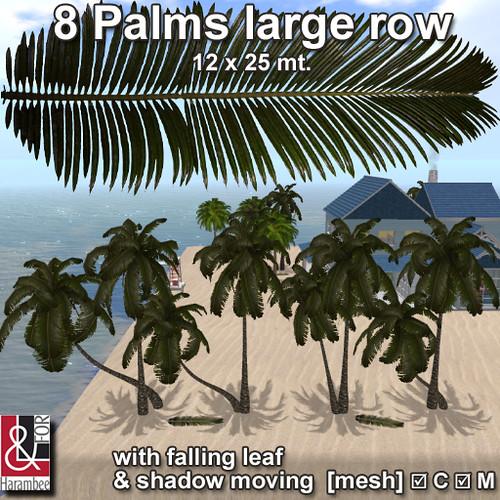8 Palms large row