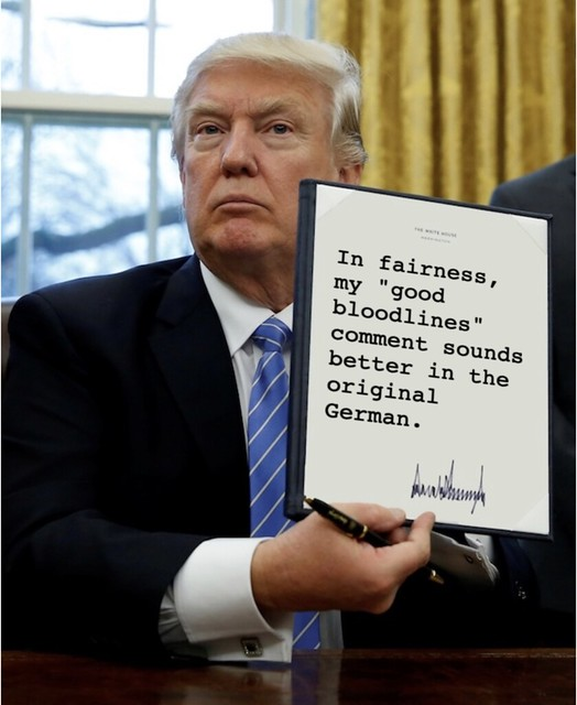 Trump_goodbloodlinesgerman