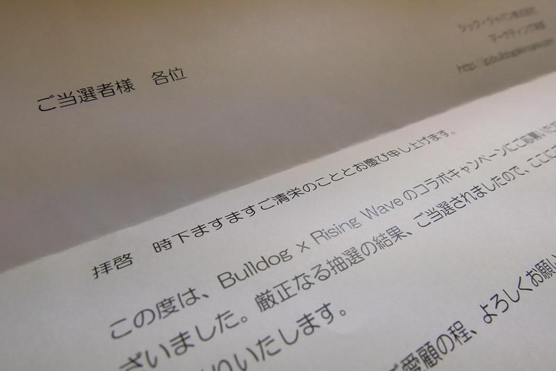 BULLDOG×RISINGWAVEスペシャルセット Wrapped present プレゼントキャンペーン