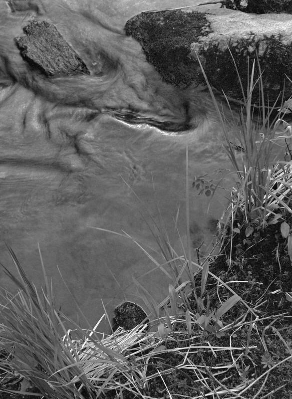 Creek Arrangement 1