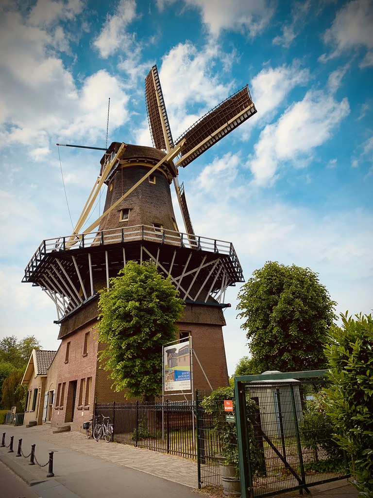 Rotterdam Daily Photo: A real Dutch and Rotterdam image in one