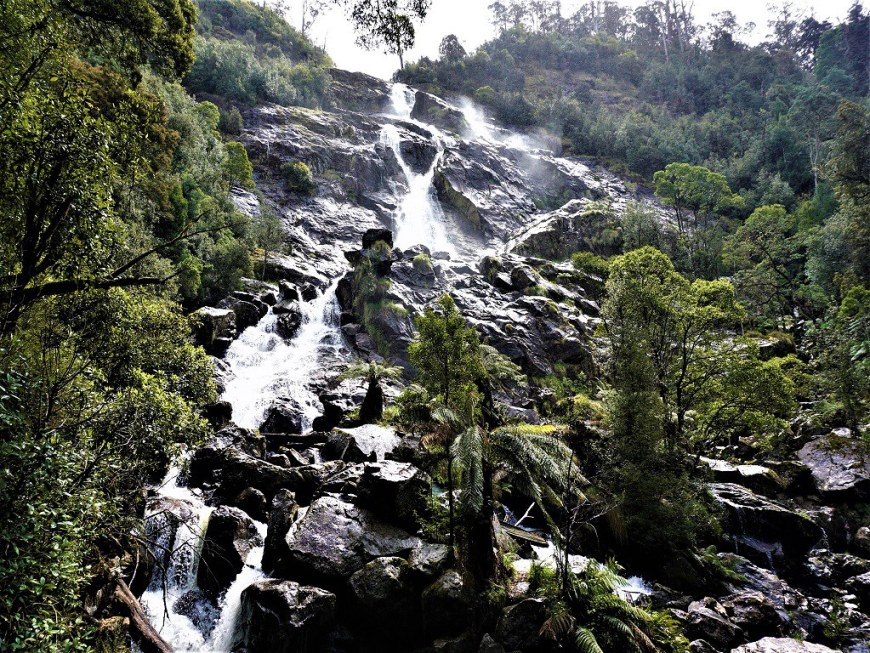 Day 8 - St Columba falls - Leisurely Drives