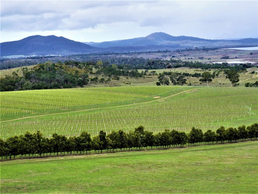 9 day road trip in Tasmania - Leisurely drives