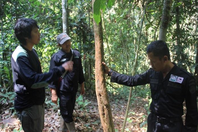 在印尼蘇門答臘南巴里桑山脈國家公園的犀牛保育團隊。圖片來源:Jeremy Hance(Mongabay)