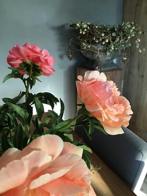 Roze rozen pot op zuil met hangers