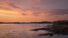 Summer evening at the swedish coast