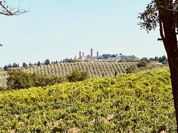 San Gimignano in Sicht