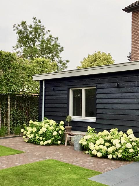 Zwarte gepotdekselde muur hortensia's tuinbank