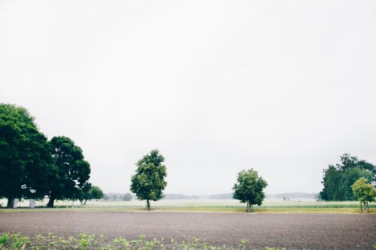 Rain mist - reaktionista.se