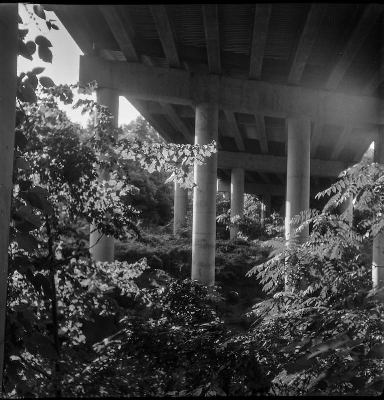 looking up, into the light, under the overpass, columns, Asheville, North Carolina, Flektar twin lens reflex, Fomapan 200, Moersch Eco film developer, 7.12.20