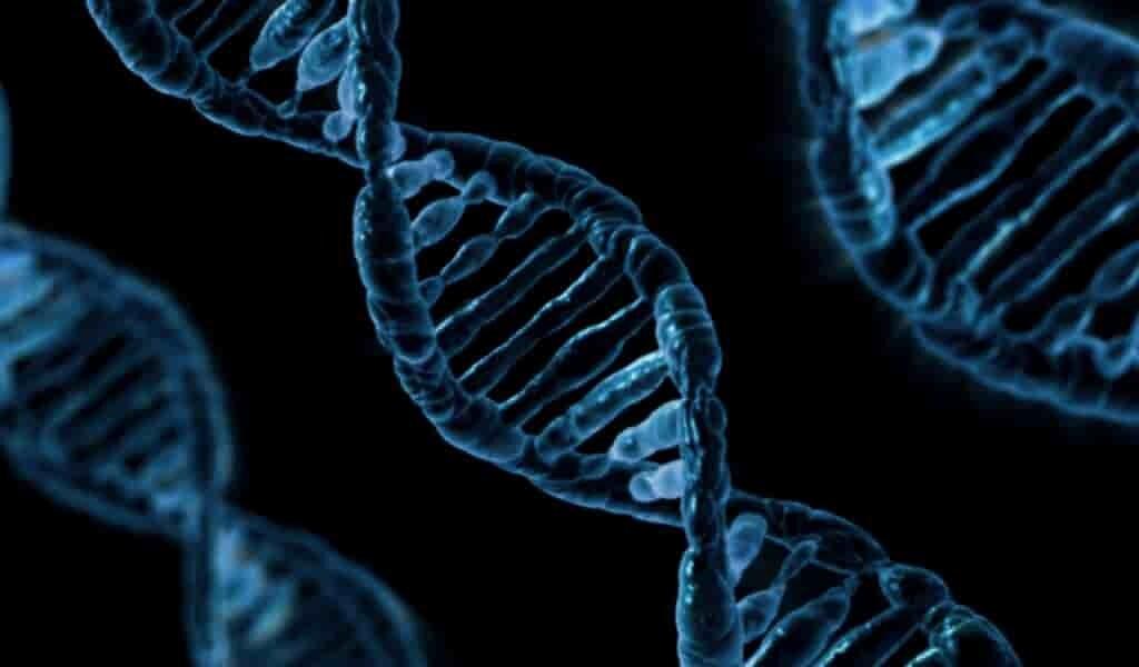 des-facteurs-génétiques-et-le-COVID-19-41