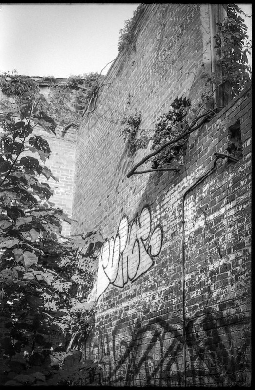 looking up, interior, abandoned mill, graffiti, urban decay, railroad and river district, asheville, nc, Kodak Retina IIIc, Arista.EDU 200, Moersch Eco film developer, 7.28.20