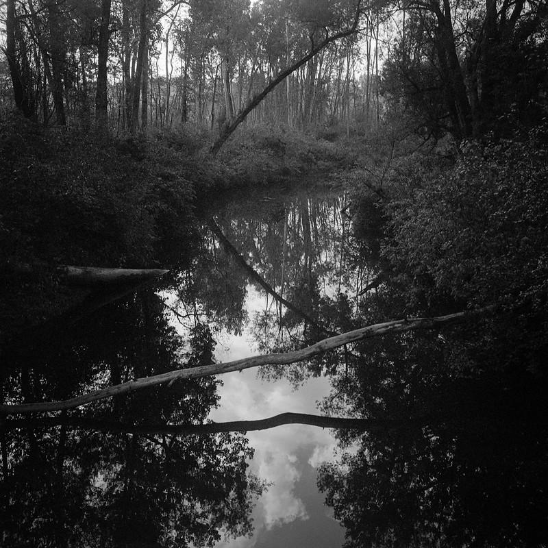 Summer Lazy Creek