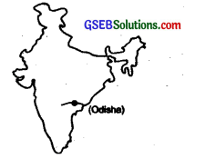 GSEB Solutions Class 10 Social Science Chapter 11 India Water Resources 4