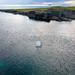 Humpback off Green Island