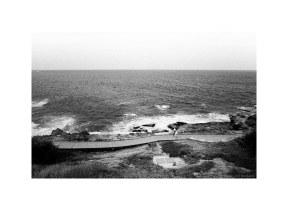 on the cliff path, Sydney, 2020  #702