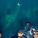 Flying over Cape Bonavista