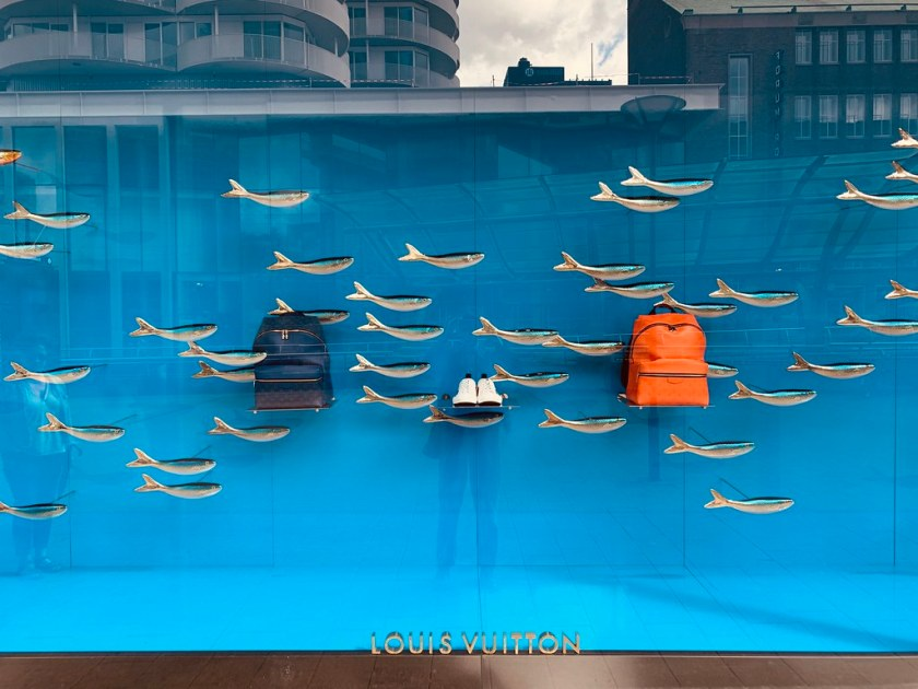 A school of fish with a sense of fashion