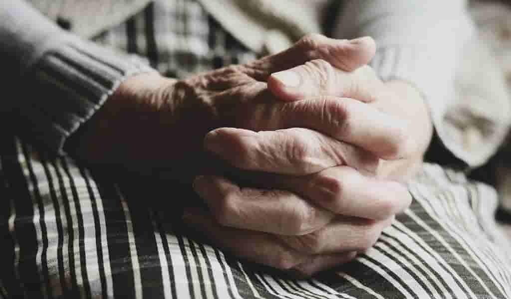 cibler-la-voie-LANDO-pour-traiter-la-maladie-Alzheimer