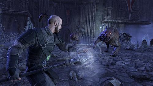Stonethorn_Castle Thorn_Undead Dual