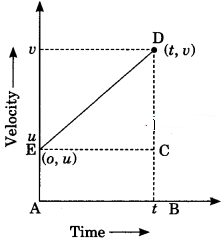 Motion Class 9 Extra Questions and Answers Science Chapter 8 img 26