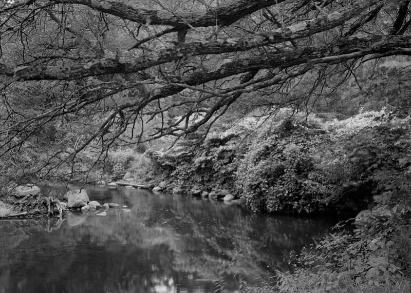 Geyser Creek 4