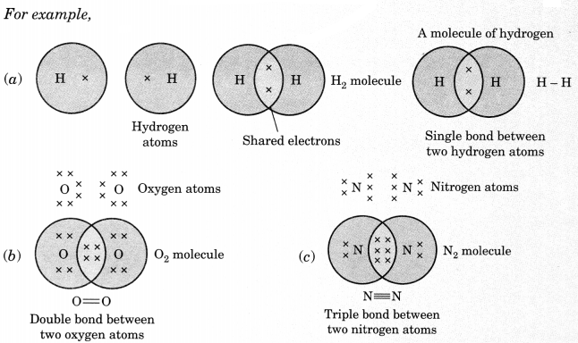 Carbon and its Compounds Class 10 Notes Science Chapter 4 1