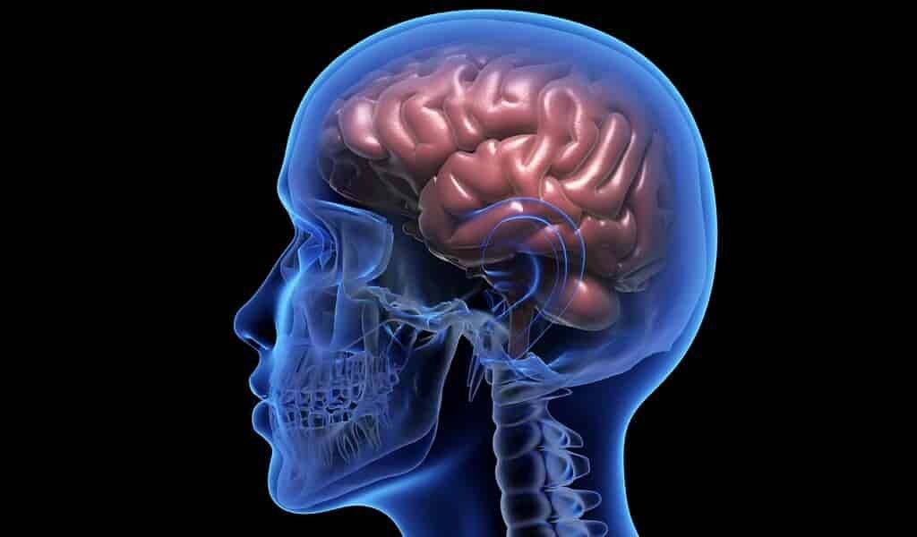 traiter-les-troubles-neurologique-avec-un-systéme-de-médicaments
