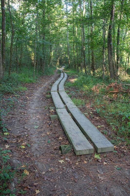 Blue Blazes Hiking Trail8