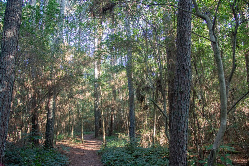 Blue Blazes Hiking Trail2