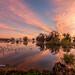 Streaky Sky Sunrise (Explored 9-22-20)