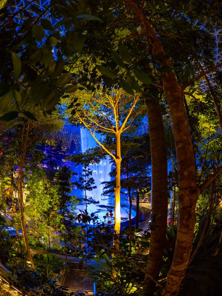 Light Fantasy @ JEWEL Changi