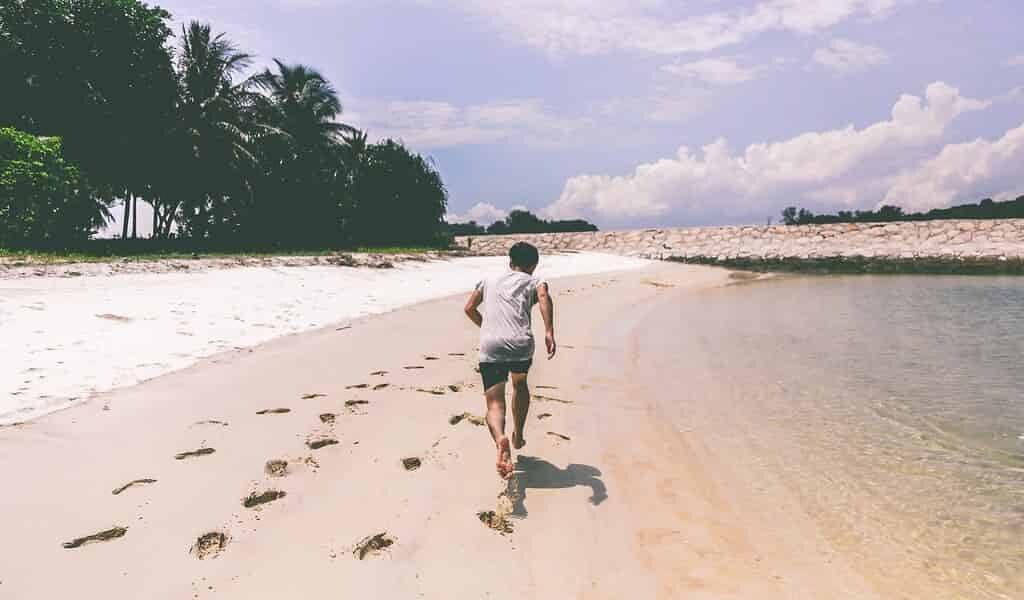 les-endocannabinoïdes-stimulent-la-mémoire-après-exercice