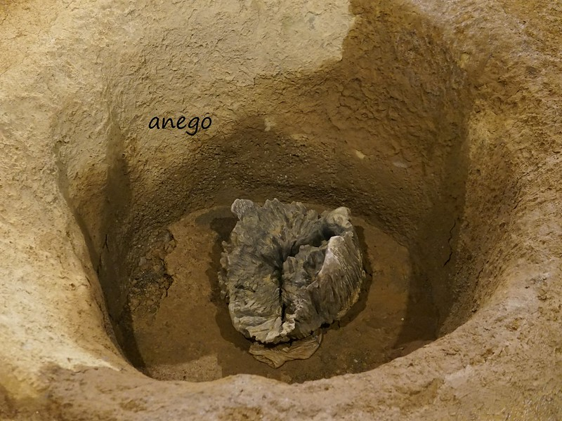 三内丸山 柱の穴