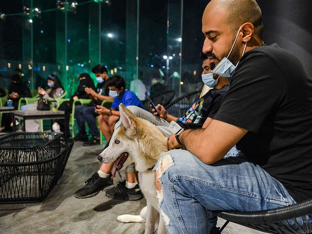 5770 The first dog café of Saudi Arabia opens in Khobar 01