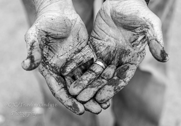 "DSC_6571-1  ~ ""#TREVOR CARPENTER PHOTO CHALLENGE 2019"" .... ~ ~ ""Week #42"" ~ ""CLEAN OR DIRTY"" ~ .... ~ 2020 ~"