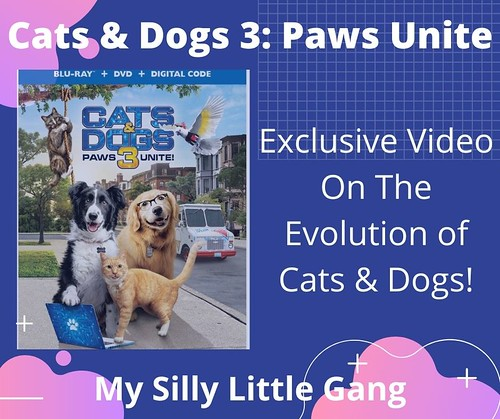 Exclusive Video On The Evolution of Cats & Dogs! Cats & Dogs 3: Paws Unite #CatsandDogs3 @WBHomeEnt #MySillyLittleGang