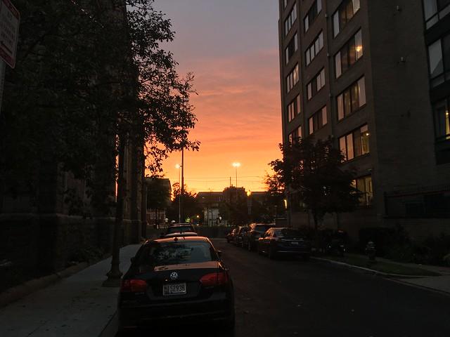 Stead sunset