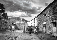 A Farm in Borrowdale