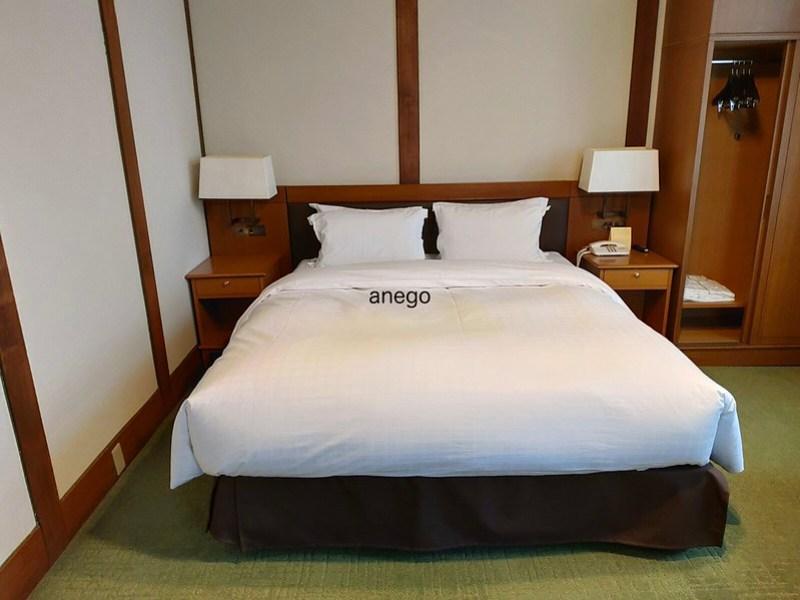 奈良ホテル ダブルルーム