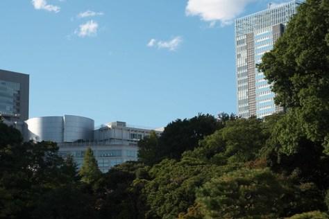 ビルの谷間の新宿御苑 Shinjuku Gyoen in the valley of the building