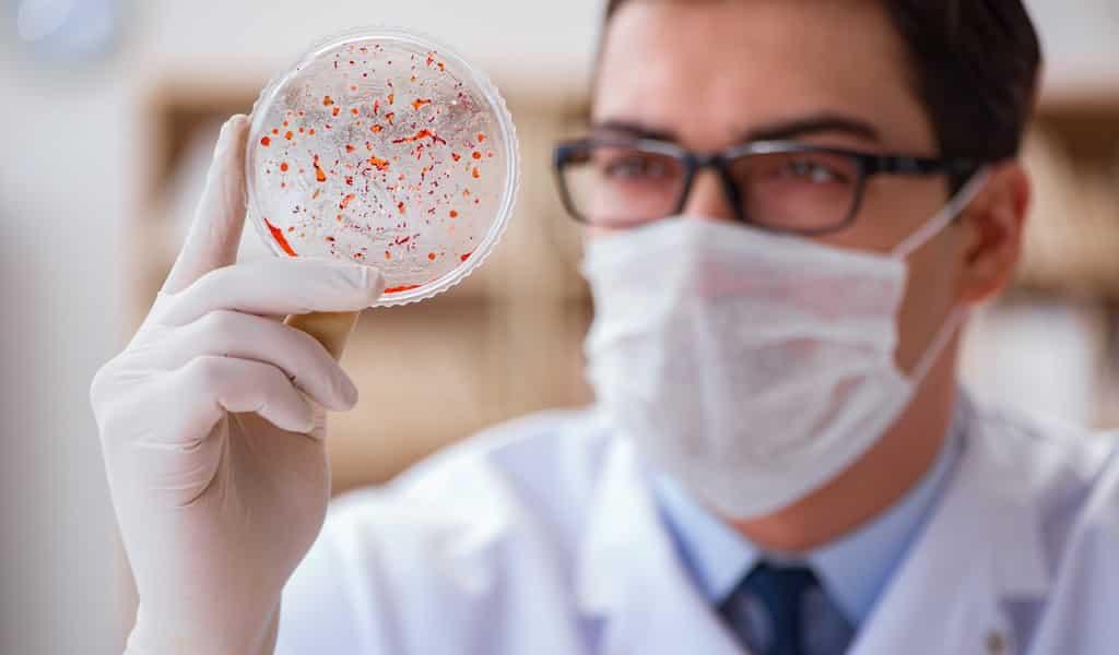 un-ancien-médicament-contre-la-résistance-aux-antibiotique