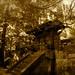 Gate of the Tomb of Shogun Ieyasu