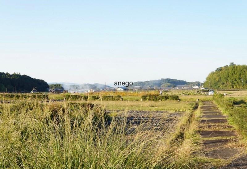 飛鳥板蓋宮遺跡 農村
