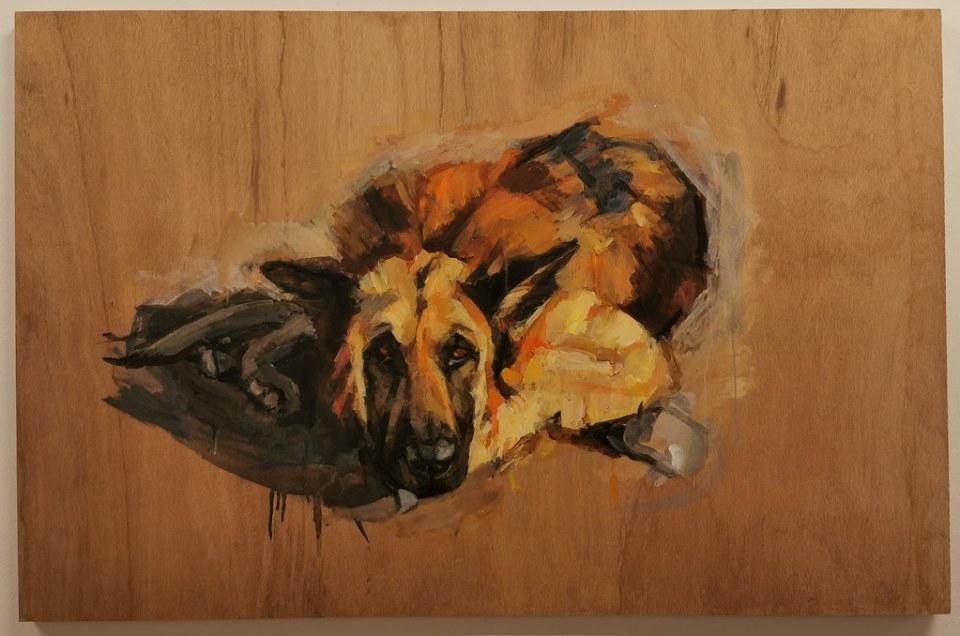 Lia Ripper Exposición pinturas de perros en el CICCA Las Palmas de Gran Canaria octubre 2020 13
