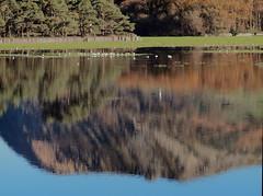 Reflection of Penmaenmawr Mountain