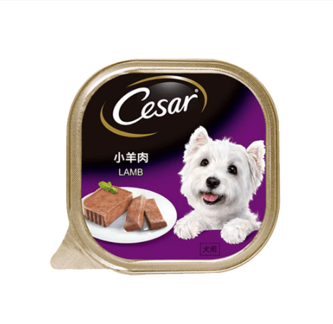 Cesar Lamb Wet Dog Food Set of 3 (100g)