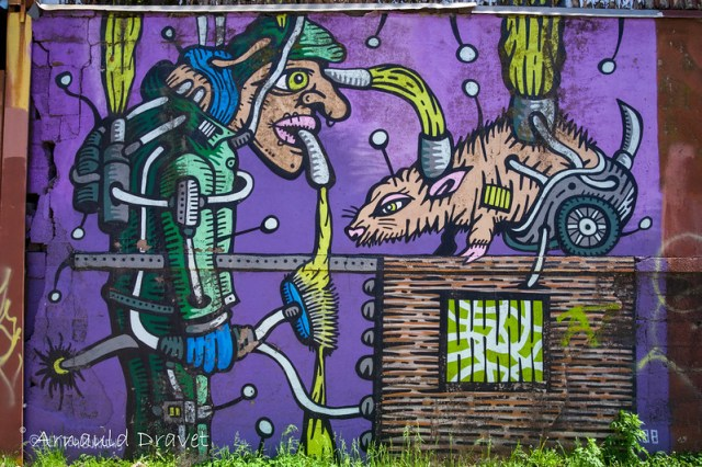 Painting in Brooklyn / Streetart - Kings County, New York, États-Unis - 11/05/2018 12h39