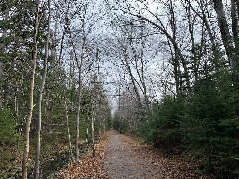 Old Lawrencetown Road Trail