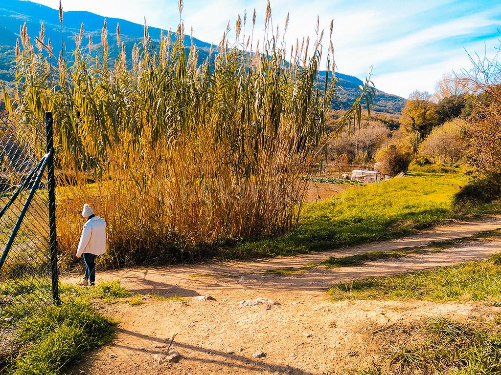 Desvío en dirección al Gorg de la Plana · Gorgs en la Garrotxa · Cataluña · Click_Trip